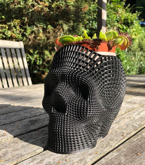 bertie the bug muncher gets a new home in his 3d printed carbon fiber and nylon skull plant pot