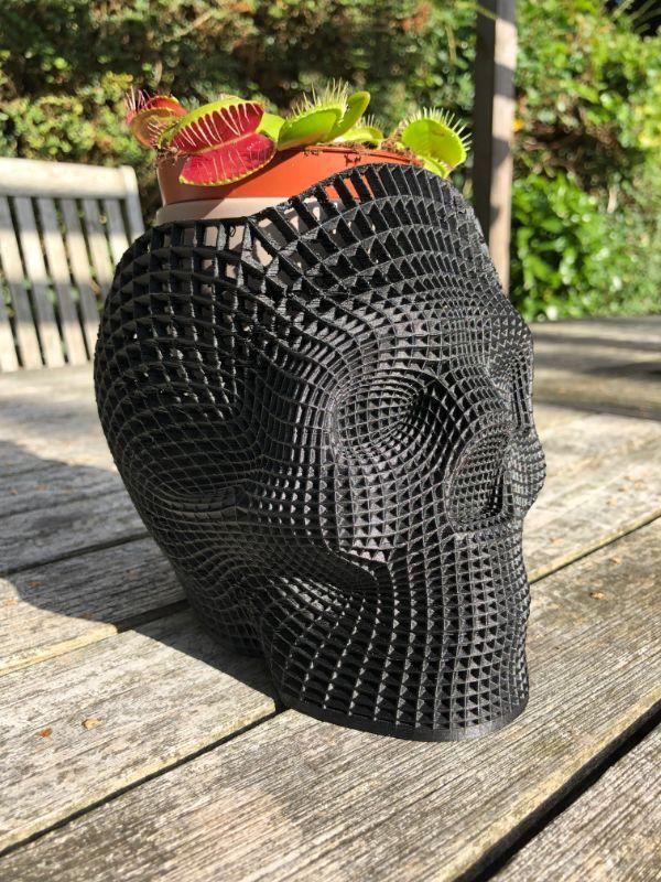 carbon fiber skull
